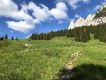 Pastos e pastagem alpinos no vale de Wagital ou de Waegital e pelo lago alpino Wagitalersee Waegitalersee, Innerthal imagens de stock royalty free