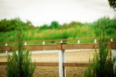 Pastos verdes de las granjas del caballo Foto de archivo