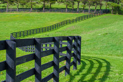 Pastos verdes de las granjas del caballo Paisaje de la primavera del campo Imágenes de archivo libres de regalías