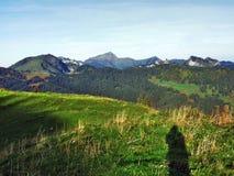 Pastos y colinas del otoño en la meseta debajo de las cordilleras Churfirsten imagen de archivo