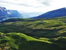 Pastos y colinas del otoño en la meseta debajo de las cordilleras Churfirsten imágenes de archivo libres de regalías