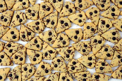 Pastries. Patten of cookies with chocolate dots Stock Photography