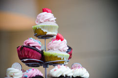Pastries. Exhibitor, with various colors Cakes Royalty Free Stock Photography