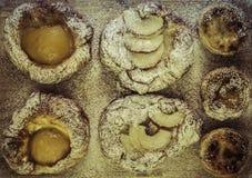 pastries Imagem de Stock