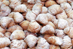 Pastries, sfogliatelle Royalty Free Stock Images