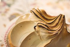 Pastry #20 Royalty Free Stock Images