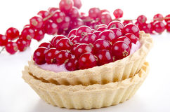 Pastry case and picked red currant Stock Photos