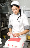 Pastry chef decorates a cake Stock Photography
