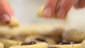 Pastry chef prepare chocolate cookies stock video footage