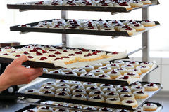 Pastry chef puts cakes in the bakery Royalty Free Stock Photography