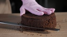 Pastry chef is cutting chocolate sponge cake on slices with big knife. stock video