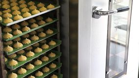 Pastry chef works with oven, make sweet baked. Industrial production stock video