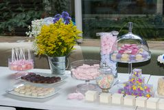 Pastry children`s party detail, cake delight and snacks, sweet desserts at children`s party. stock image