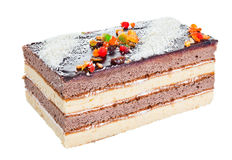 Pastry chocolate cake Stock Images