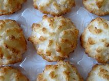 Pastry with coconut. Group pastry with coconut background Stock Photography