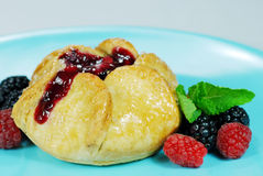 Pastry filled with fruit Stock Images