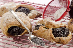 Pastry with plum jam and poppy seed Royalty Free Stock Photo