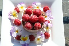 Pastry with raspberries. Chocolate cake with cream and fresh raspberries Stock Photo