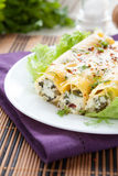 Pastry tubes with ricotta and spinach, cannelloni Royalty Free Stock Photo