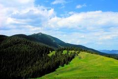 Pasturage горы стоковое фото rf