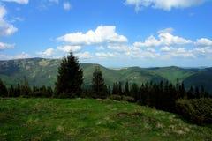 Pasturage горы стоковое изображение rf