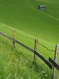 Pasture. Green Alps summer in Austria Royalty Free Stock Images