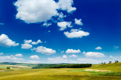 The pasture. The pasture, blue sky, clouds Royalty Free Stock Images