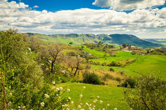 Pasture in the central Sicily, Italy Royalty Free Stock Photos