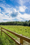 Pasture in countryside Finland Royalty Free Stock Photography
