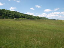 Pasture Field royalty free stock photography
