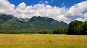 Pasture at the foot of the mountains of Siberia Royalty Free Stock Images