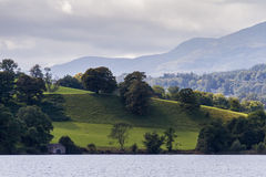 Pasture with grazing sheep near Lake Windermere, Cumbria in Engl Stock Photography