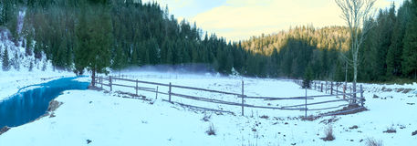 Pasture for horses in winter.  Stock Photos