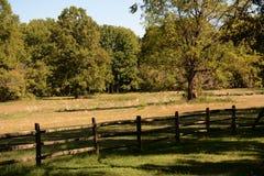 Pasture on the Island Stock Photos