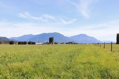 Pasture Land in Canada Royalty Free Stock Photo