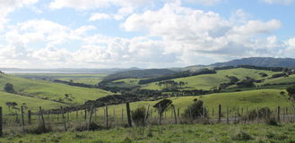 Pasture land overlooking harbor in Kaipara, New Zealand Stock Image