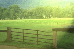 Pasture Land in Sunshine. Fenced in pasture land in bright sunshine Royalty Free Stock Images