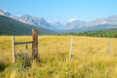 Pasture lands in Glacier National Park. Royalty Free Stock Photography