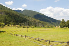 Pasture in mountains Stock Photo