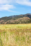Pasture and Mountains Royalty Free Stock Photos
