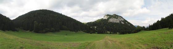 Pasture near Malino Brdo in Velka Fatra mountains in Slovakia. Pasture near Malino Brdo in Velka Fatra mountains Stock Photos