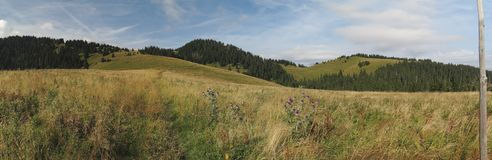 Pasture near Siprun mountain in Velka Fatra mountains in Slovakia Royalty Free Stock Image