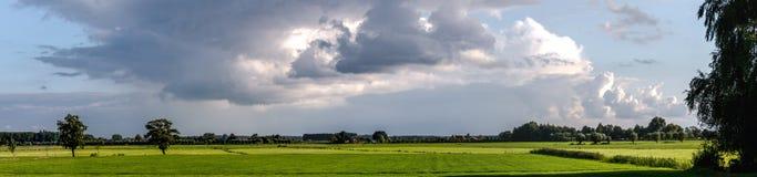Pasture panorama Royalty Free Stock Photos