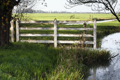 Pasture picket fence Stock Photo