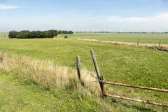 Pasture at Skarl. Stock Image