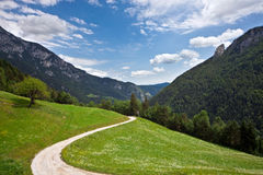 Pasture in Slovenian Alps Stock Photography