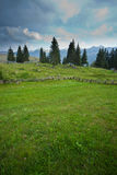 Pasture in Slovenian Alps Stock Image