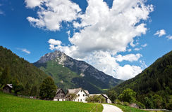 Pasture in Slovenian Alps Royalty Free Stock Images