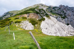 Pasture in Slovenian mountains Stock Images