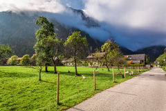 Pasture in a small village in the Alps Royalty Free Stock Photography